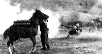 Sergeant Reckless under fire during the Korean War