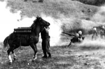 Sergeant Reckless under fire during the Korean War