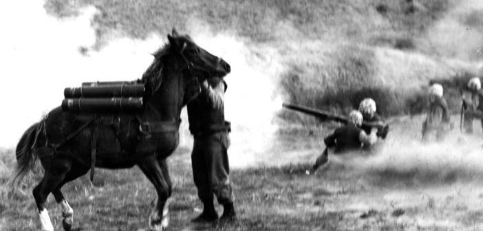 That Horse Was A Marine! Staff Sergeant Reckless